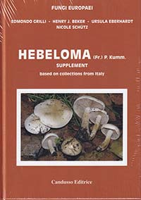 Hebeloma Supplement. 14A
