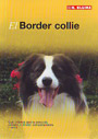Border collie, El