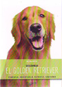 Golden retriever, El ¡Descúbrelo!