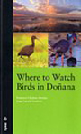 Where to watch birds in Doñana